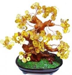 Есть решение - денежное дерево будет приятно получить любому человеку!  Денежное дерево 25 см. Стоимость доставки...