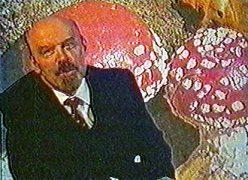 Почему Путин - краб, Медведев - шмель, а Ленин - гриб?