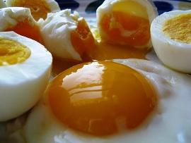 из нас является яичница. Яйца ...