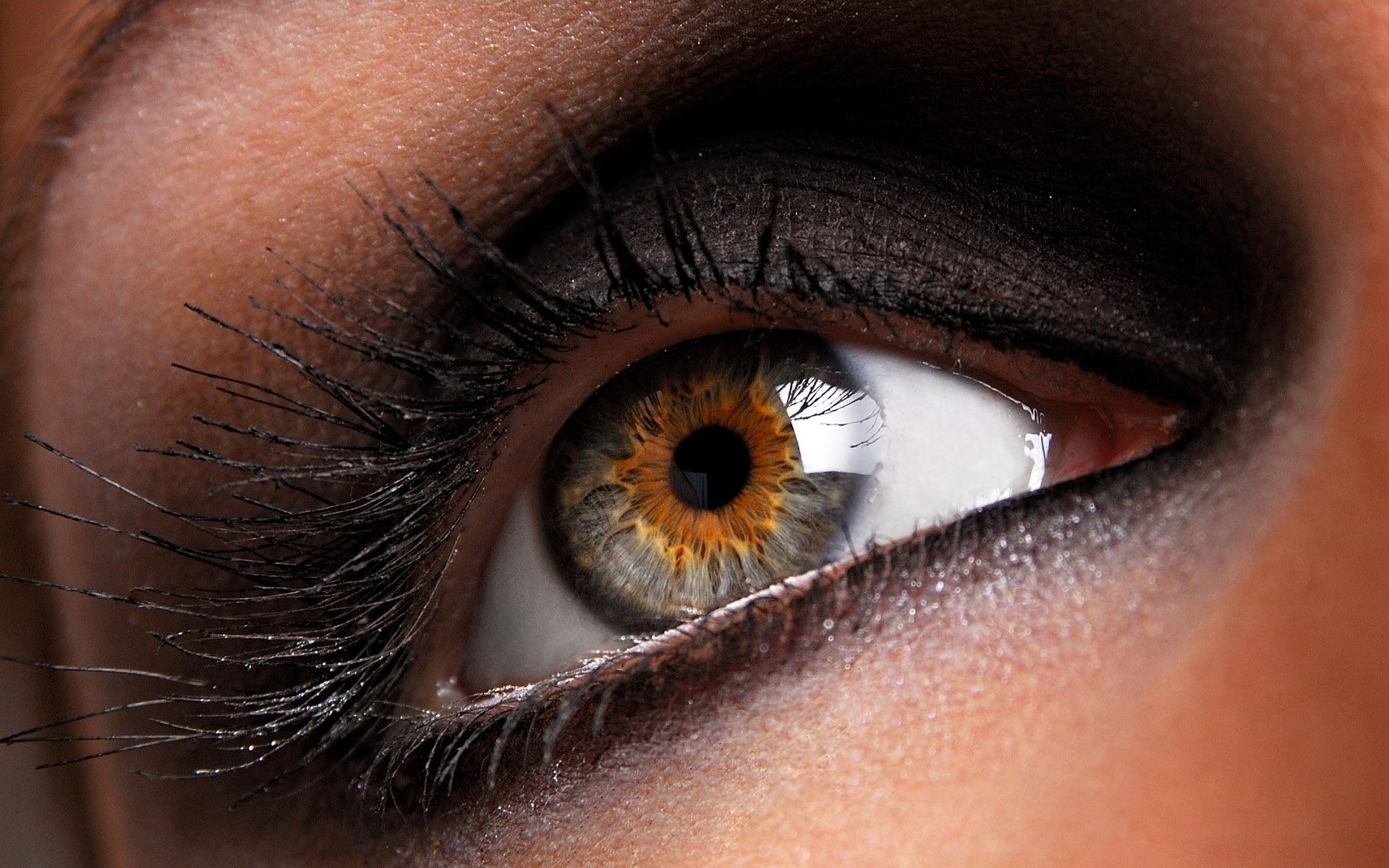 Цвет глаз каре зеленые