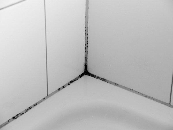 Плесень возле ванны