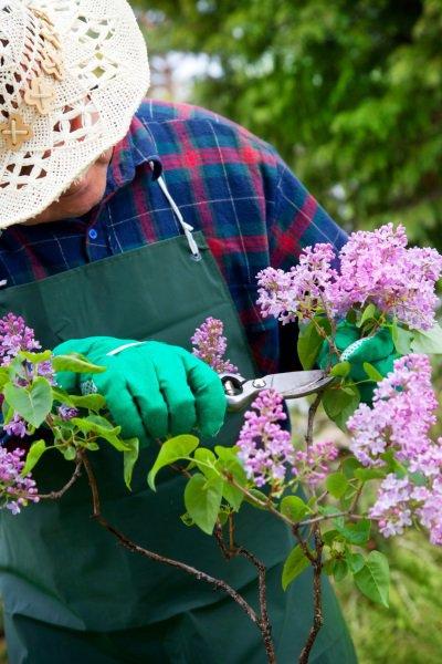 прикормка для весны руками