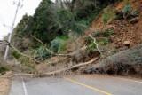 Землетрясения. Почему происходят землетрясения